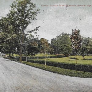 #2646 Forest Avenue from Apawamis Avenue, Rye 1909