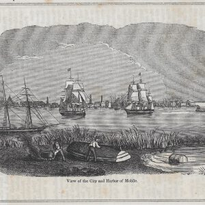 #4173 View of City and Harbor of Mobile, 1874