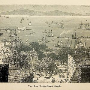 #4967 View of New York Bay from Trinity Church, 1874