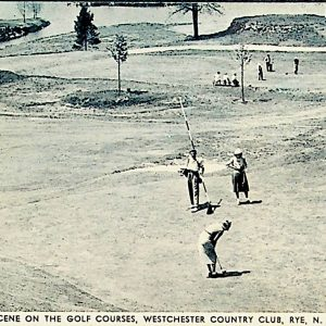 #5496 Golf Courses, Westchester Country Club, Rye 1930s